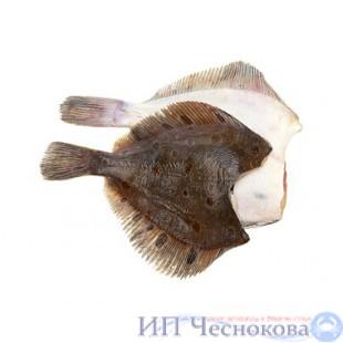 Камбала б/г  300-500 штучной заморозки