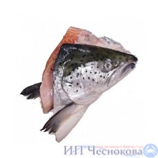Сёмга (лосось) ГОЛОВЫ